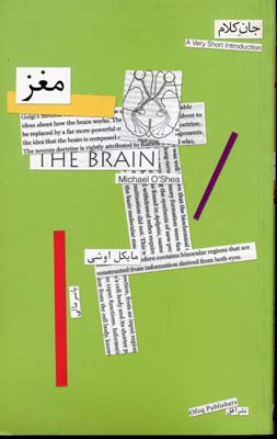 مغز---جان-كلام-(2)