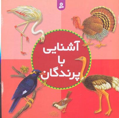 آشنايي-با-پرندگان