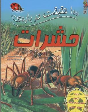 100-حقيقت-درباره-حشرات