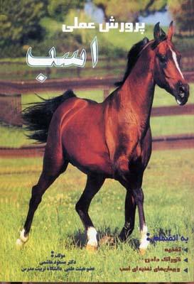 پرورش-عملي-اسب