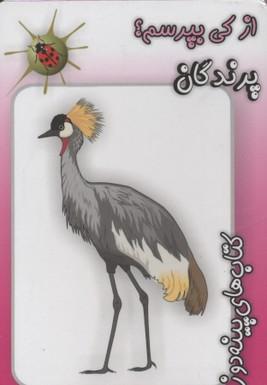 كتاب-هاي-پينه-دوز-از-كي-بپرسم؟-پرندگان