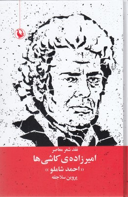 اميرزاده-ي-كاشي-ها
