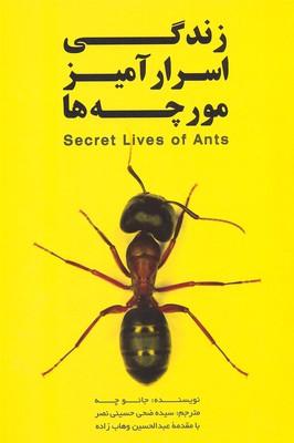 زندگي-اسرارآمير-مورچه-ها