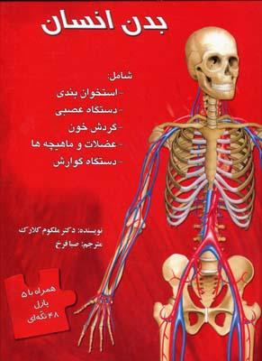بدن-انسان(پازل)