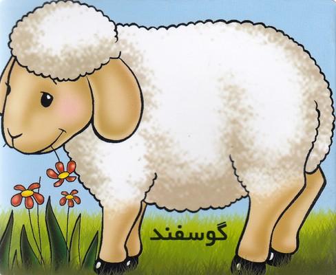 آموزش-خردسال-گوسفند