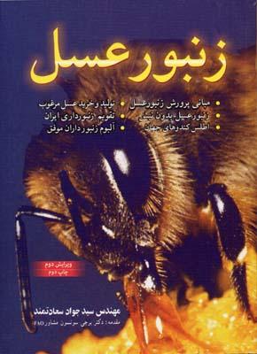 زنبور-عسل