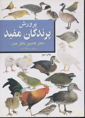 پرورش-پرندگان-مفيد