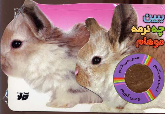 ببين-چه-نرمه-موهام-(حس-ميكنم)خرگوش