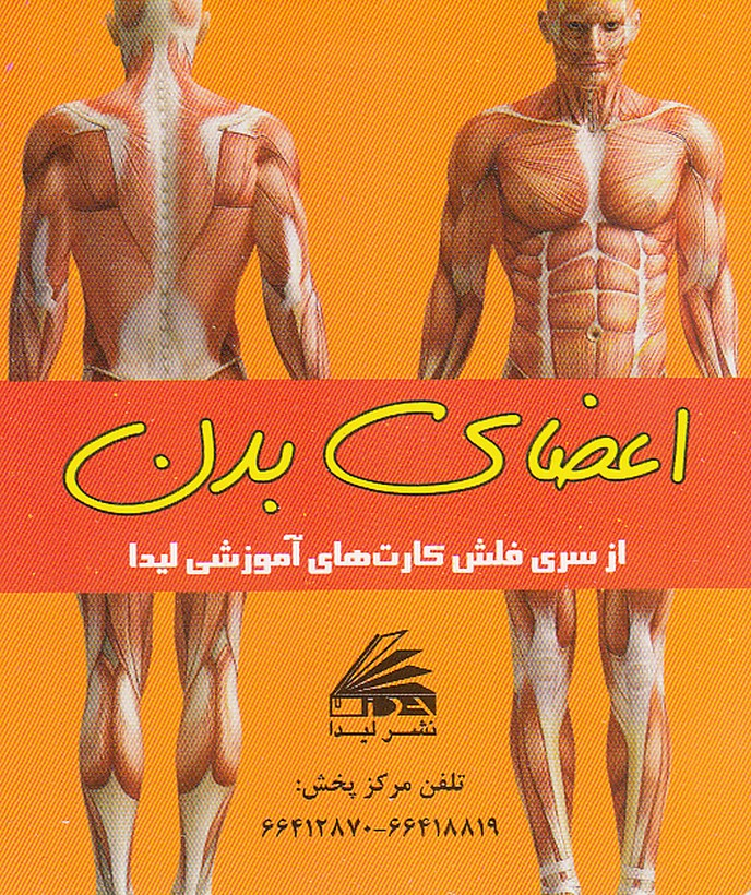 فلش-كارت-اعضاي-بدن(ليدا)1-16