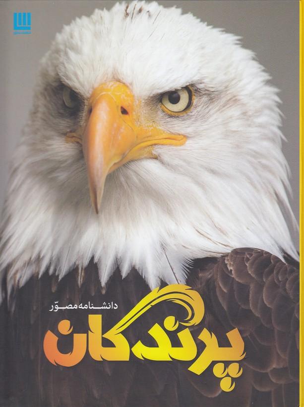 دانشنامه-مصور-پرندگان-(سايان)-رحلي-سلفون
