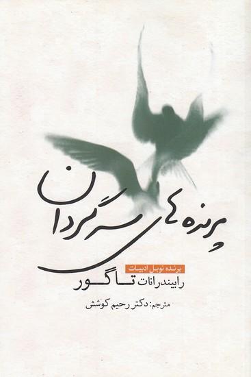 پرنده-هاي-سرگردان-(سبزان)-رقعي-شوميز