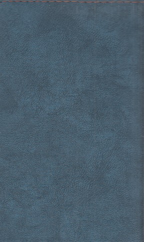 تقويم-(كيا)-پالتويي-جين-87147