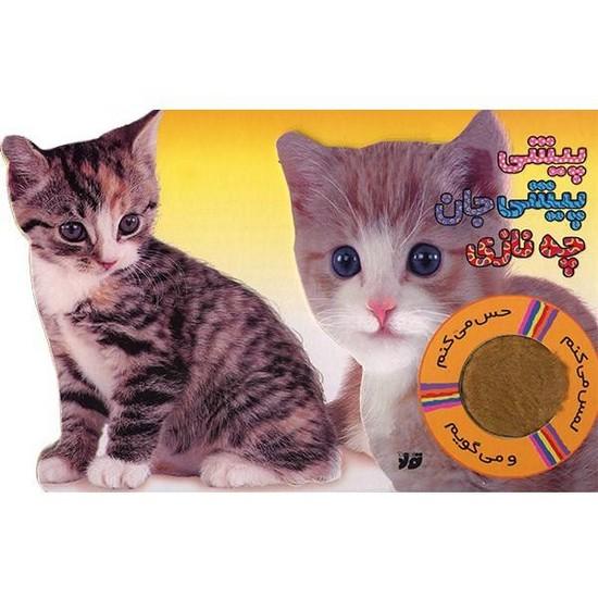 پيشي-پيشي-جان-چه-نازي---گربه---لمس-مي-كنم-(جابيرو)-رقعي-سخت