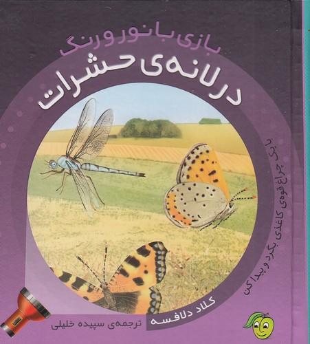 بازي-با-نور-و-رنگ---در-لانه-ي-حشرات-(پيام-مشرق)-نيم-خشتي-سلفون
