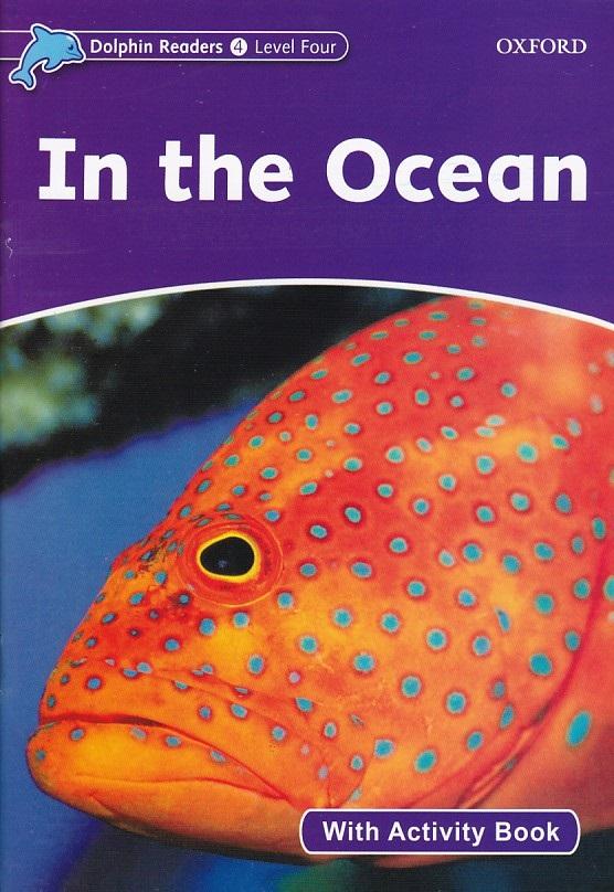 dolphin-reader-in-the-ocean