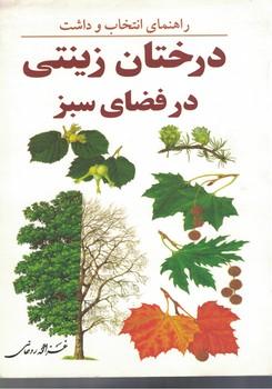 راهنماي-انتخاب-و-داشت-درختان-زينتي-در-فضاي-سبز