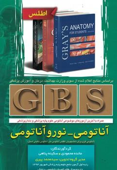 gbs-آناتومي-نوروآناتومي