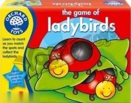 Ladybirds 009