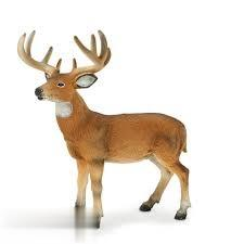 White Tailed Buck 387038