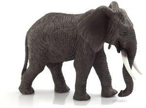 African Elephant 387189