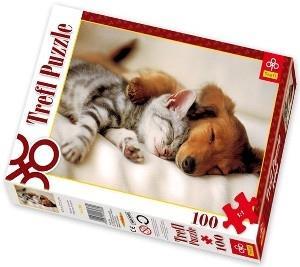 پازل توله سگ و گربه 100 16138