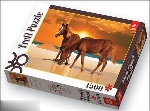 اسبها در ساحل 26093