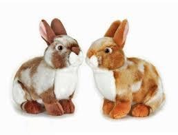 خرگوش 710106 Eddy Coniglietto