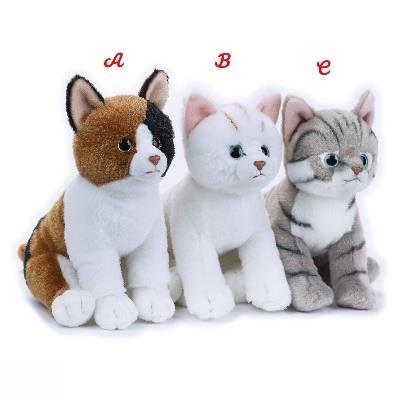 گربه 731116
