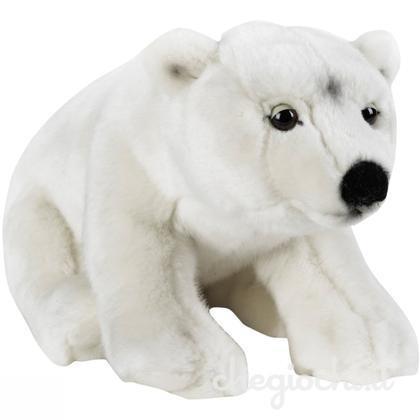 خرس قطبي Orso Polare 770723