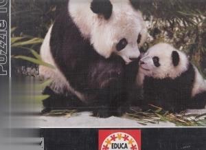 Panda Bears 13768