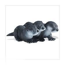 North American River Otter Babies 160905