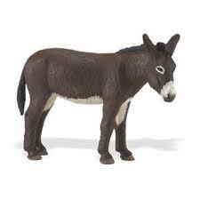 Donkey 249829
