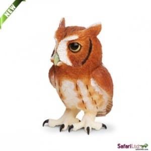 Eastern Screech Owl 263429