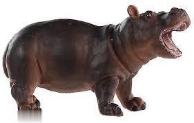 Hippopotamus Baby 270529