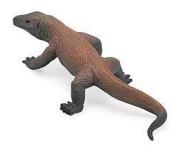 Komodo Dragon 291029