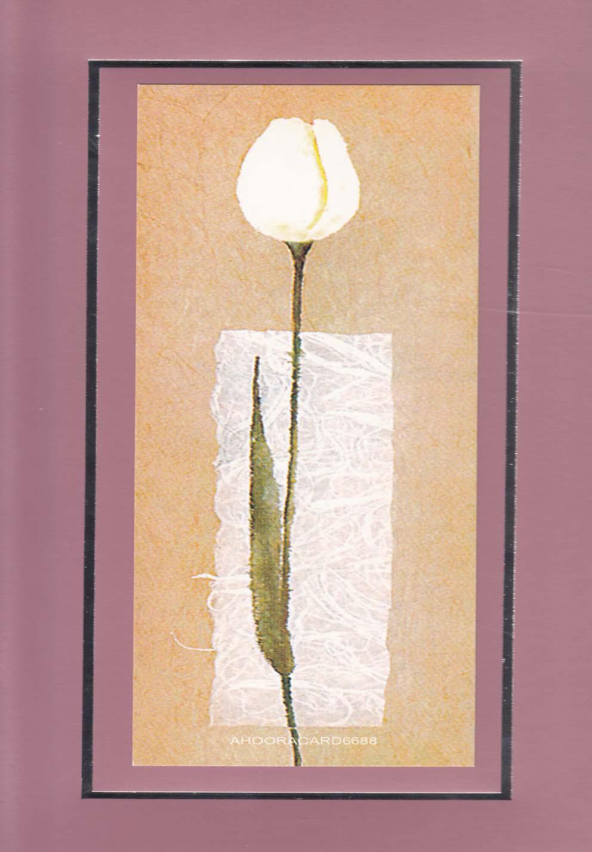 كارت پستال شماره(11)فريمدارباريك1(اهورايي)