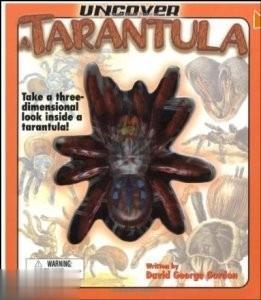 Uncover a Tarantula