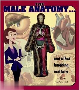 Male Anatomy & Other Laughing Matters