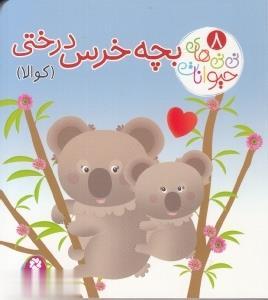 نينيهاي حيوانات 8 بچه خرس درختي: كوالا