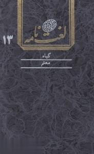 لغتنامه دهخدا 13 (16 جلدي)
