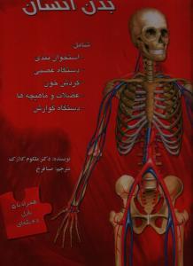 بدن انسان (پازلي)