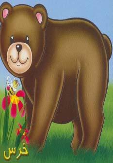حيوانات را بشناسيم (خرس)،(گلاسه)
