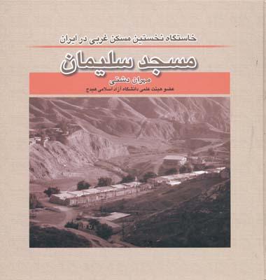 مسجد سليمان خاستگاه نخستين مسكن غربي در ايران - دشتي