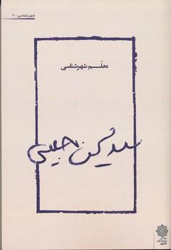 سید محسن حبیبی معلم شهرشناسی