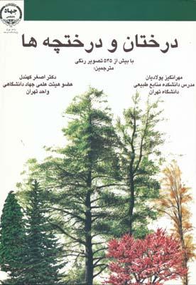 درختان و درختچه ها