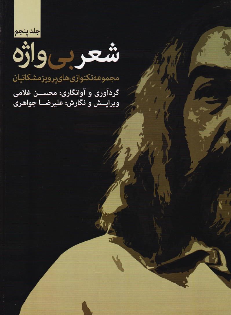شعر بی واژه(جلد پنجم): مجموعه تکنوازی های پرویز مشکاتیان برای سنتور